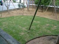 芝生のお庭