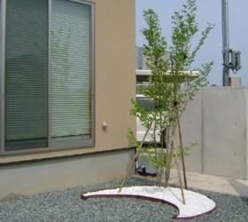 樹木1本からの植栽